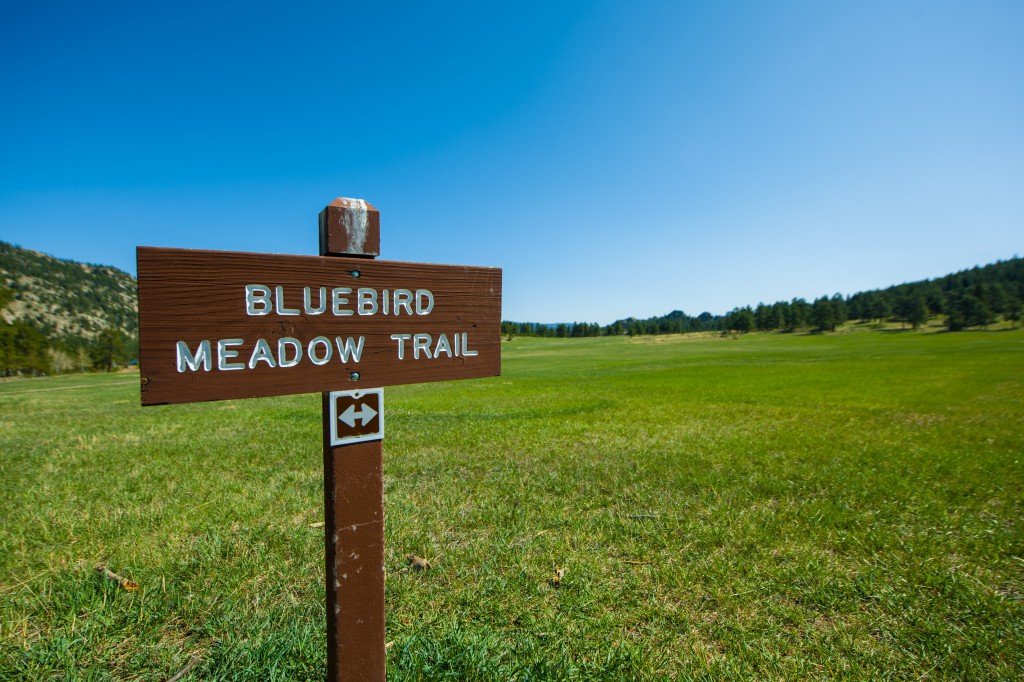 Bluebird Meadow Trail